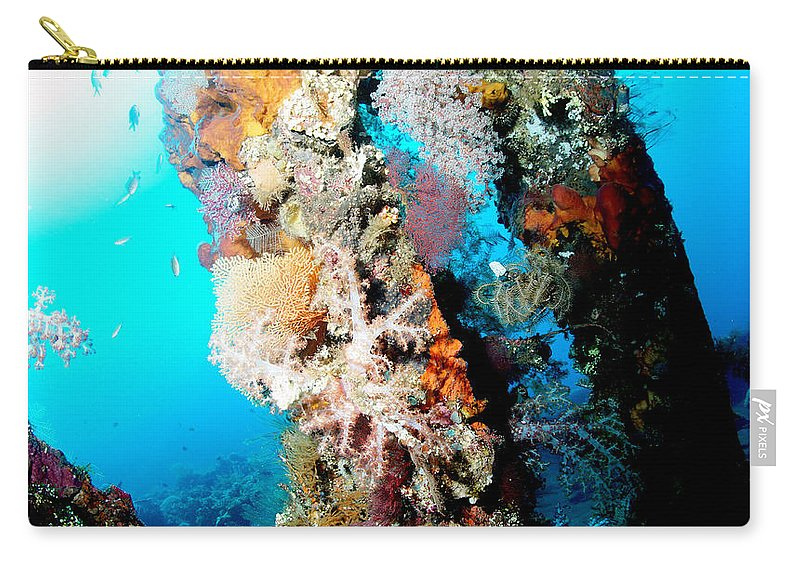Carry-all Pouch featuring the photograph Coral Pillars by Todd Hummel