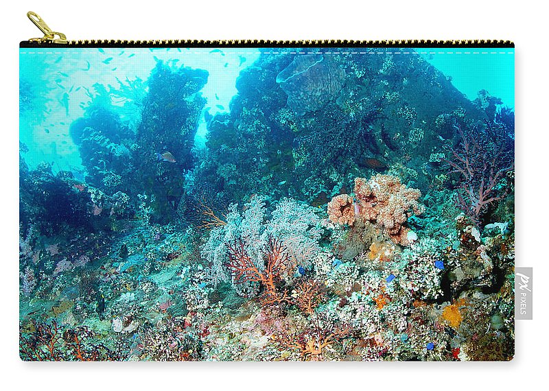Carry-all Pouch featuring the photograph Coral Pyramid by Todd Hummel