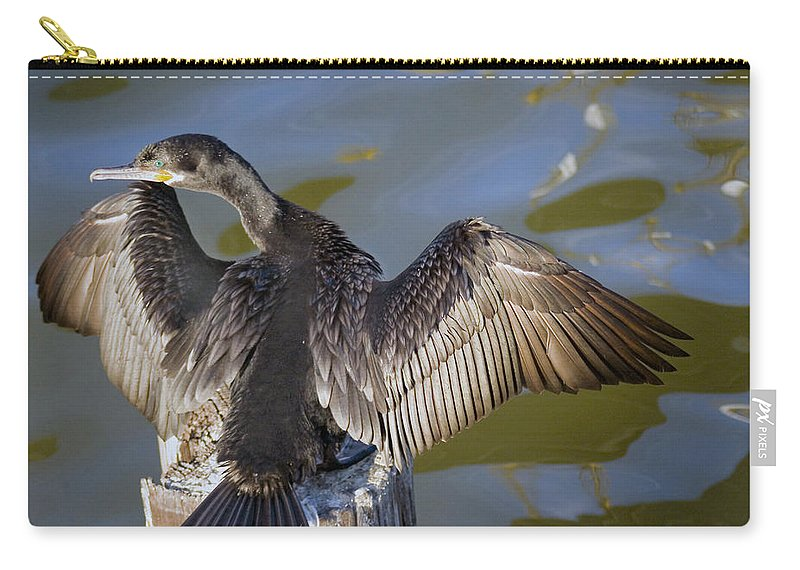 Neotropic Cormorant Carry-all Pouch featuring the photograph Cormorant looking back by Robert Brown