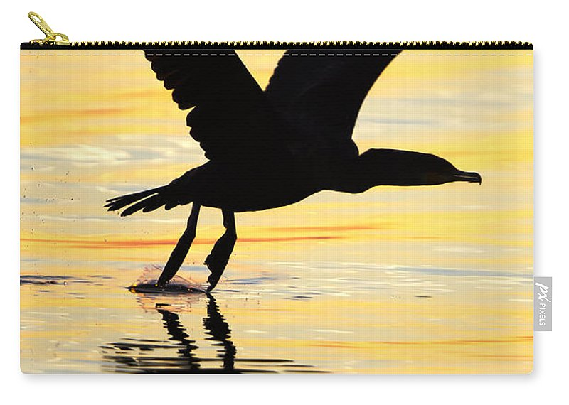 Cormorant Carry-all Pouch featuring the photograph Cormorant Silhouette by Janet Fikar