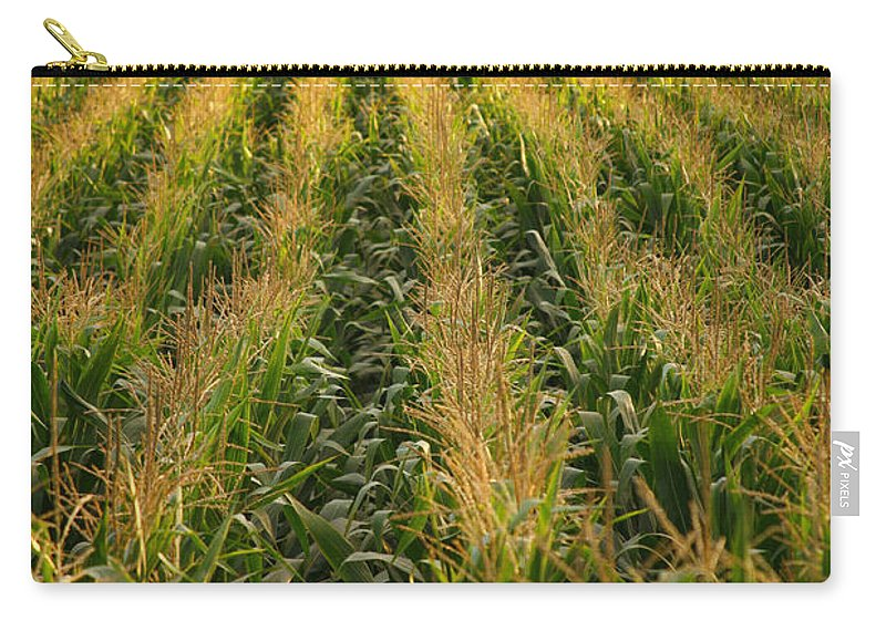 Acores Carry-all Pouch featuring the photograph Corn Field by Gaspar Avila