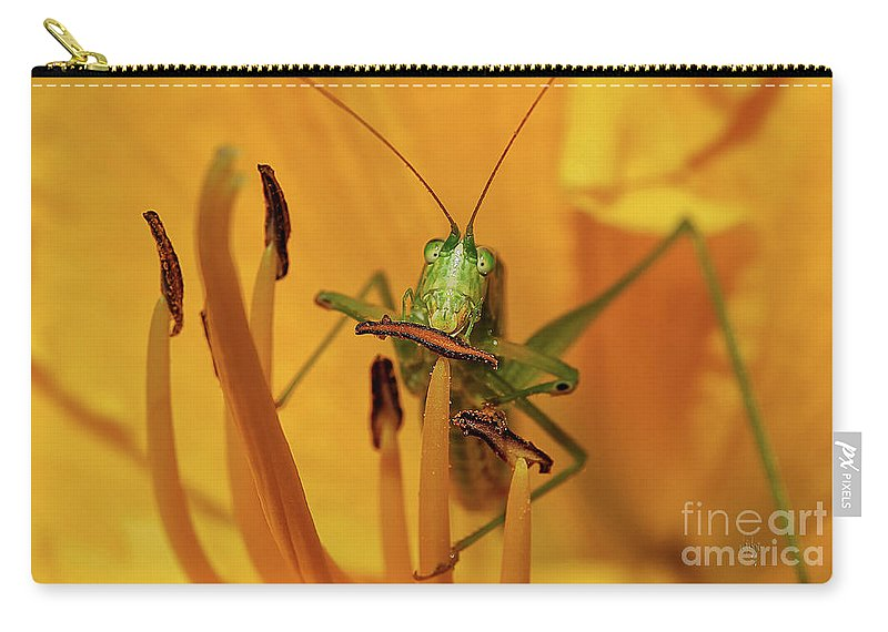 Bug Carry-all Pouch featuring the photograph Corn On The Cob by Lois Bryan