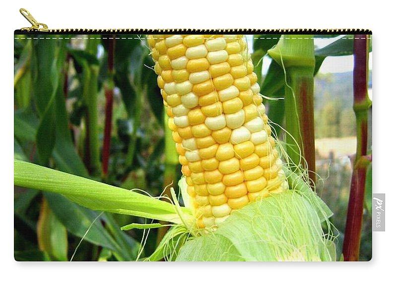 Corn Carry-all Pouch featuring the photograph Corn On The Cob by Will Borden