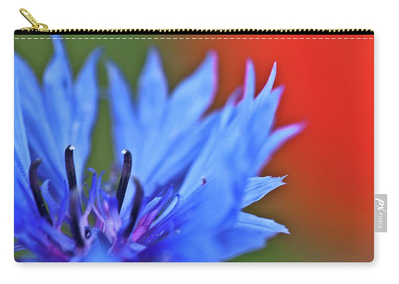 Cornflower Carry-all Pouch featuring the photograph Cornflower by Heiko Koehrer-Wagner