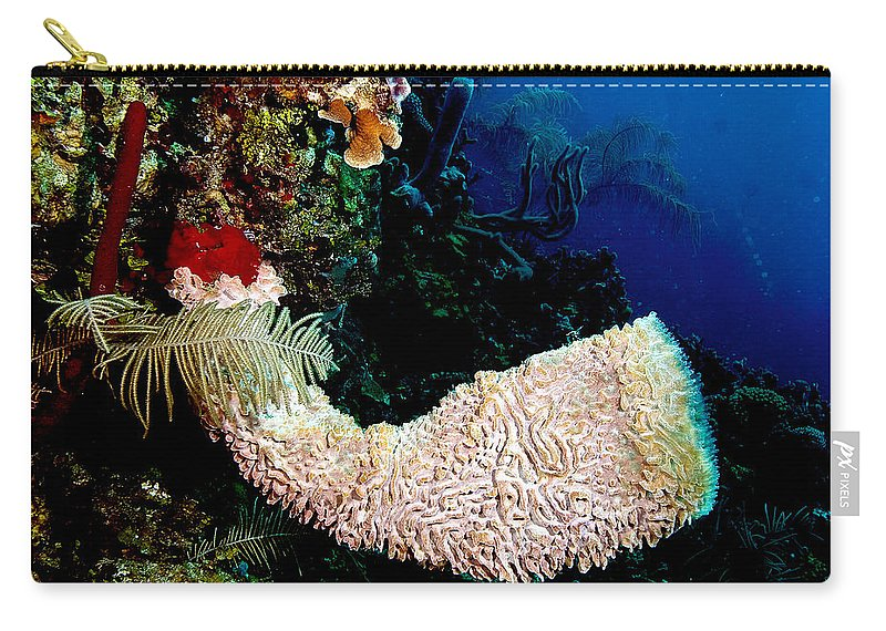 Playa Royal Resort Carry-all Pouch featuring the photograph Cornucopia by Jean Noren