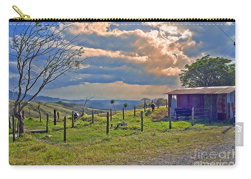 Cow Carry-all Pouch featuring the photograph Costa Rica Cow Farm by Madeline Ellis
