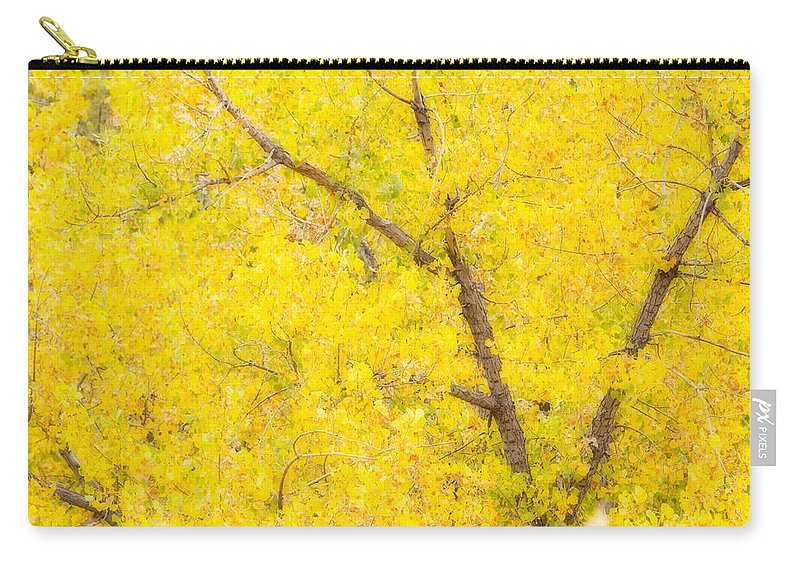 Trees Carry-all Pouch featuring the photograph Cottonwood Colors by James BO Insogna