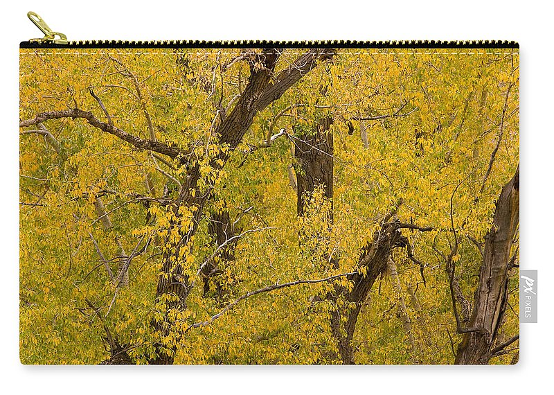 Autumn Carry-all Pouch featuring the photograph Cottonwood Fall Foliage Colors by James BO Insogna