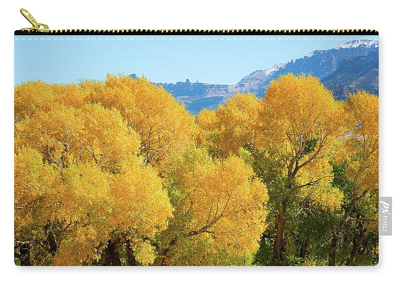 Cody Carry-all Pouch featuring the photograph Cottonwoods in All Their Glory by Frank Madia