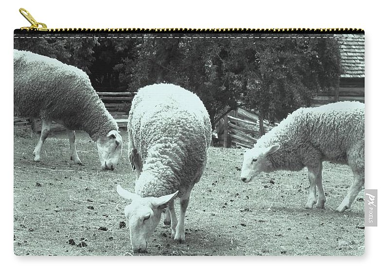 Sheep Carry-all Pouch featuring the photograph Counting Sheep by Ian MacDonald