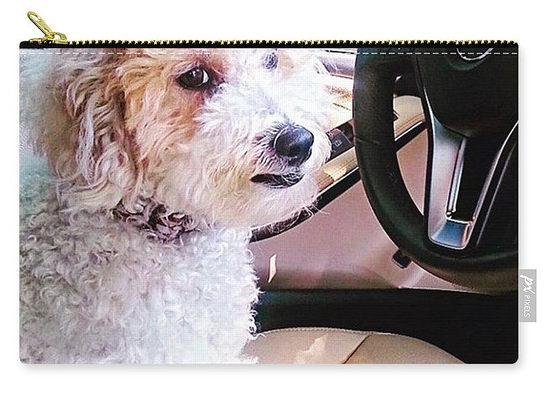 Wheel Carry-all Pouch featuring the photograph Cousin Theo Is Behind The #wheel And by Austin Tuxedo Cat
