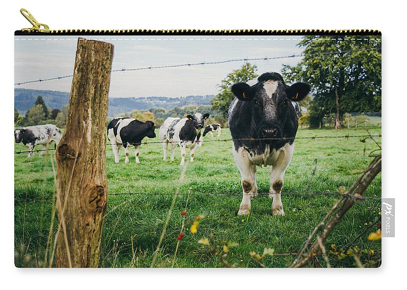 Black Carry-all Pouch featuring the photograph Cow Herd by Pati Photography