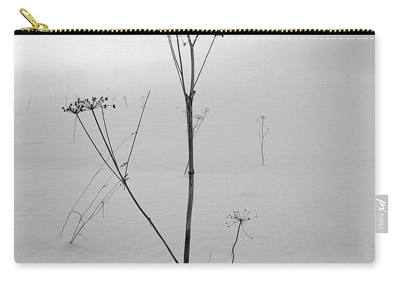 Lehtokukka Carry-all Pouch featuring the photograph Cow Parsley Bw by Jouko Lehto