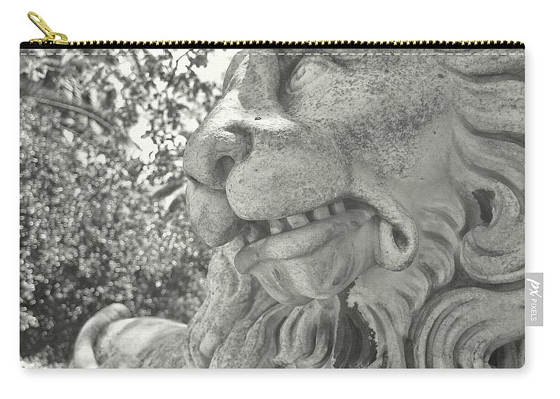 Marble Carry-all Pouch featuring the photograph Cowardly Lion by JAMART Photography