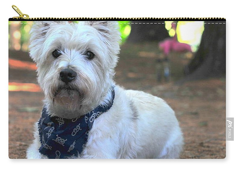 West Highland Terrier Carry-all Pouch featuring the photograph Cowboy Westie by Catherine Reusch Daley