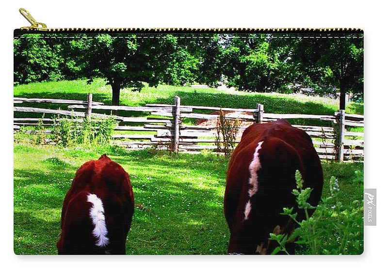 Cows Carry-all Pouch featuring the photograph Cows Grazing by Ian MacDonald