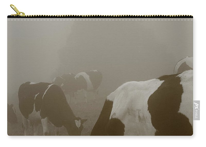 Animals Carry-all Pouch featuring the photograph Cows In The Mist by Gaspar Avila