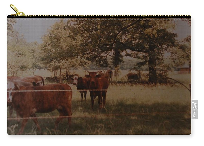 Cows Carry-all Pouch featuring the photograph Cows by Rob Hans