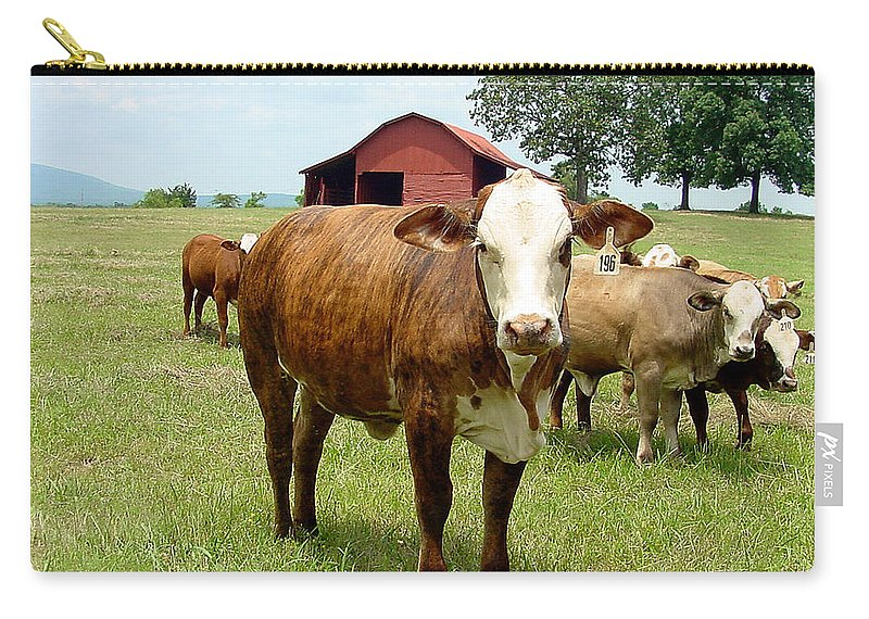 Cow Carry-all Pouch featuring the photograph Cows8944 by Gary Gingrich Galleries