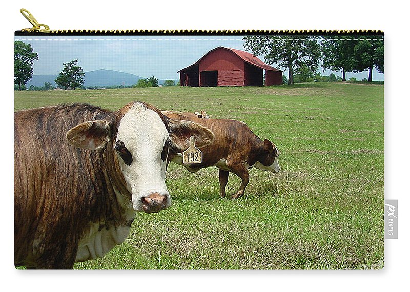 Cow Carry-all Pouch featuring the photograph Cows8986 by Gary Gingrich Galleries