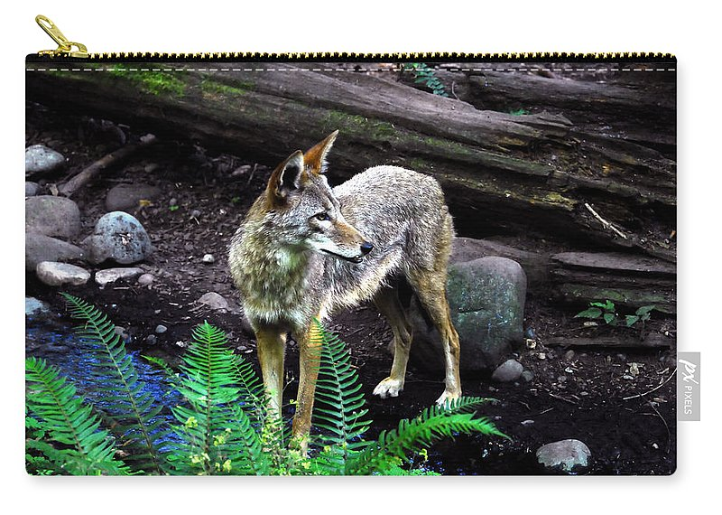 Coyote Carry-all Pouch featuring the photograph Coyote In Mid Stream by David Lee Thompson