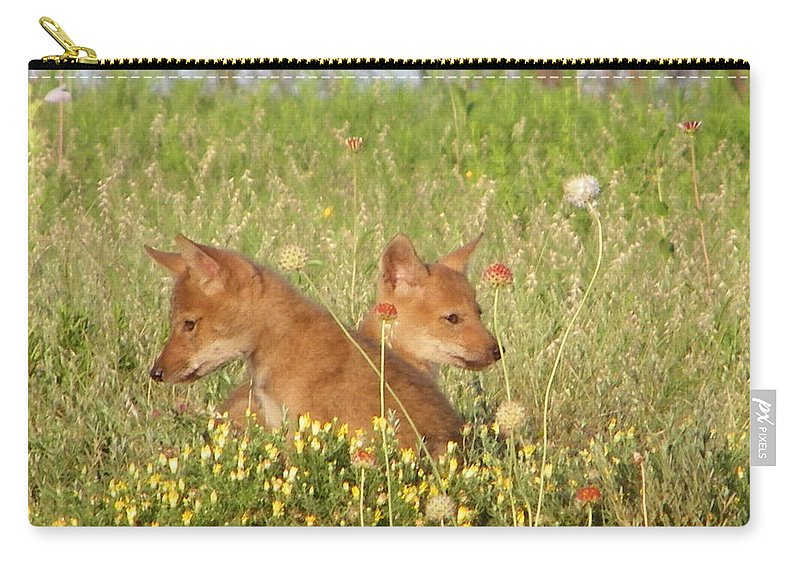 Pup Carry-all Pouch featuring the photograph Coyote Pups by Gale Cochran-Smith
