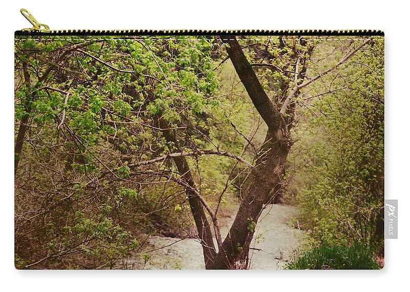 Dreamy Carry-all Pouch featuring the photograph Cozy Stream in American Fork Canyon Utah by Colleen Cornelius