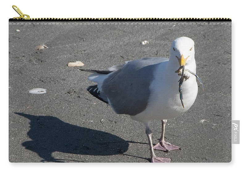 Seagull Carry-all Pouch featuring the photograph Crab Plate by Steven Natanson