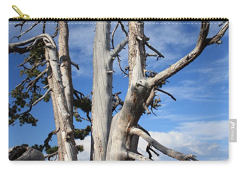 Tree Carry-all Pouch featuring the photograph Crater Lake Tree by Carol Groenen