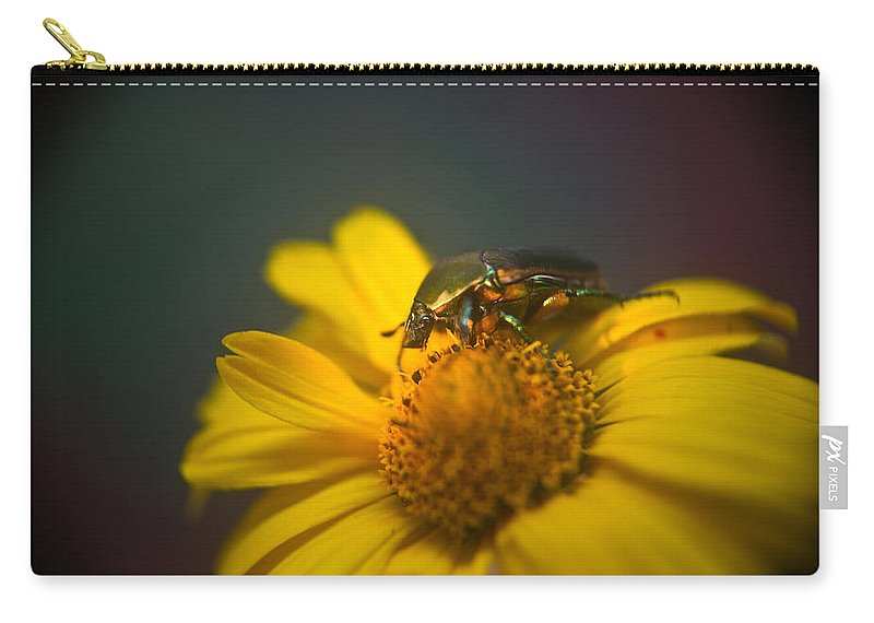 June Carry-all Pouch featuring the photograph Crawling June Beetle by Douglas Barnett
