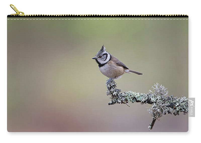 Crested Carry-all Pouch featuring the photograph Crested Tit Lichen by Peter Walkden