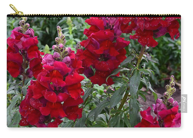 Snapdragons Carry-all Pouch featuring the photograph Crimson Snapdragons by Robert VanDerWal