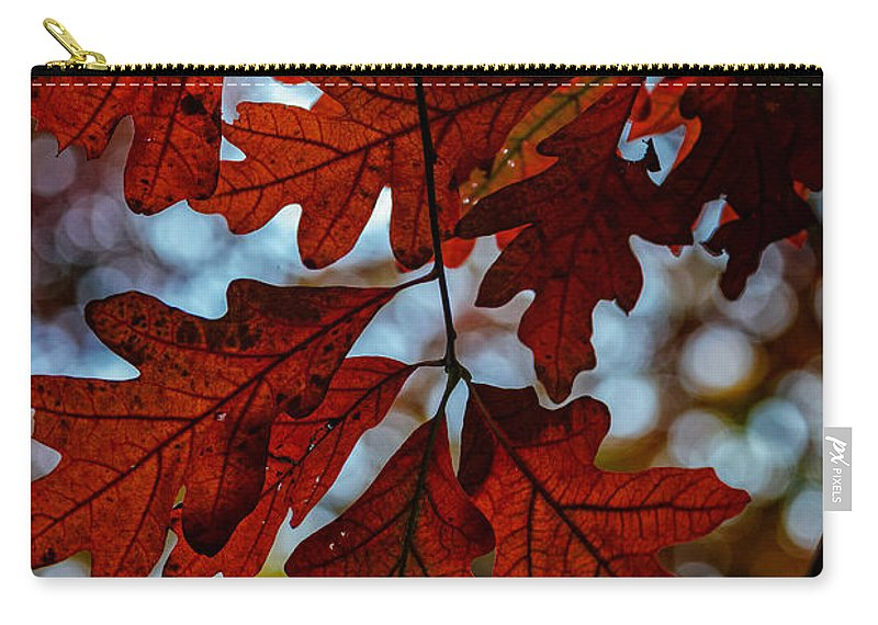Foliage Carry-all Pouch featuring the photograph Crimson Oak by Rick Berk