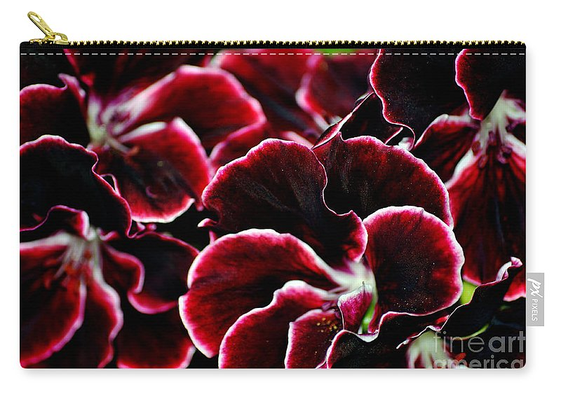 Clay Carry-all Pouch featuring the photograph Crimson Propellers by Clayton Bruster