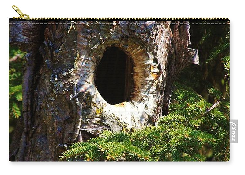 Birch Tree Carry-all Pouch featuring the photograph Critter Home by Lori Mahaffey