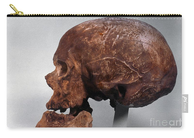 Artifact Carry-all Pouch featuring the photograph Cro-magnon Skull by Granger