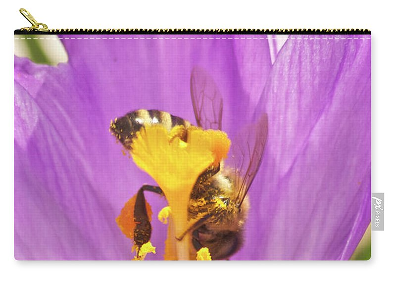 Crocus Carry-all Pouch featuring the photograph Crocus And The Bee by Michael Peychich