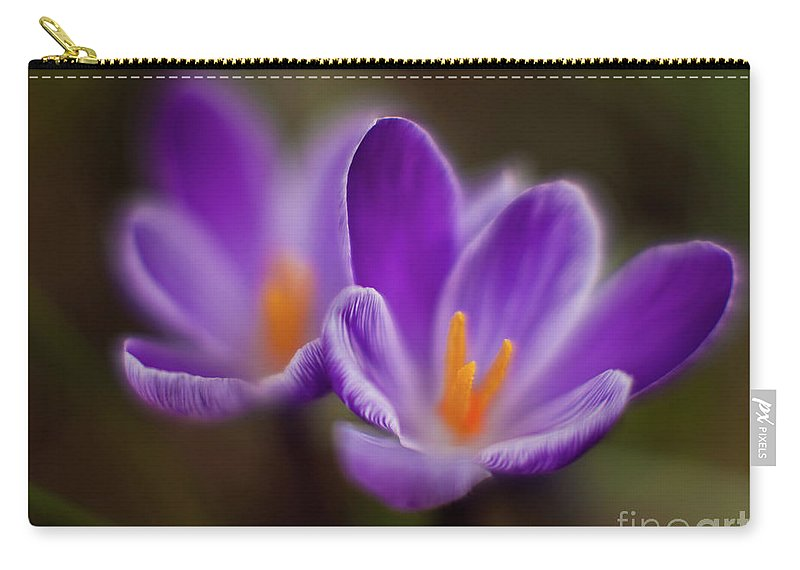 Crocus Carry-all Pouch featuring the photograph Crocus Glory by Mike Reid