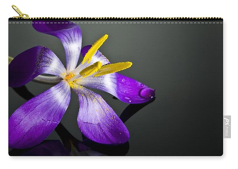 Crocus Carry-all Pouch featuring the photograph Crocus by Svetlana Sewell