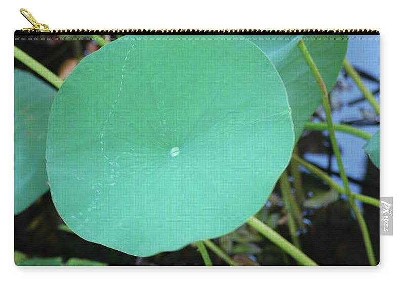 Carry-all Pouch featuring the photograph Crossing The Lily Pond Outback Number One by Heather Kirk