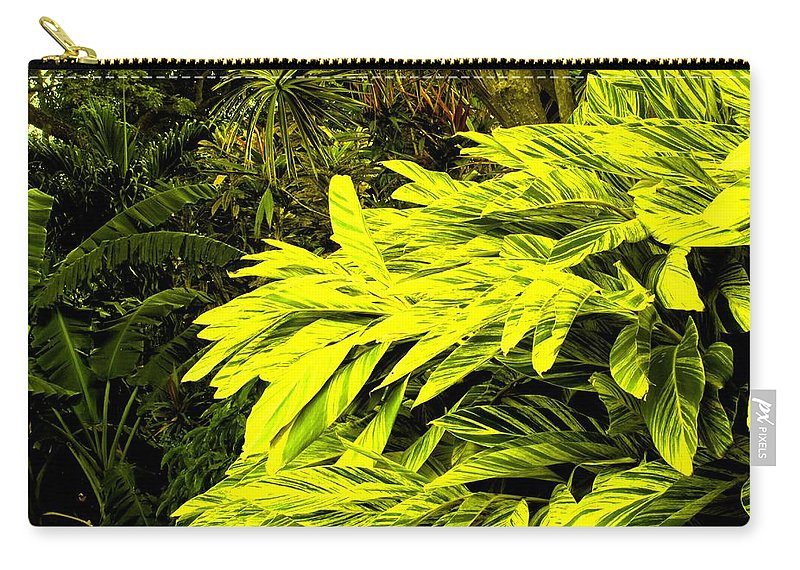 Croton Carry-all Pouch featuring the photograph Croton Cascading Down The Hillside by Ian MacDonald