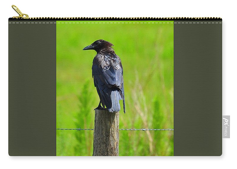 Crow Carry-all Pouch featuring the photograph Crow 5 by Amy Spear