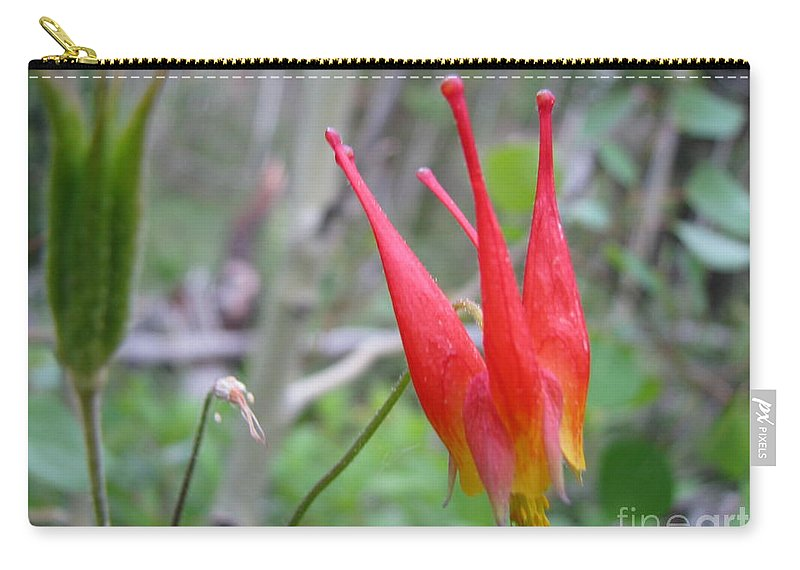 Flowers Of Colorado Carry-all Pouch featuring the photograph Crown by Amanda Barcon