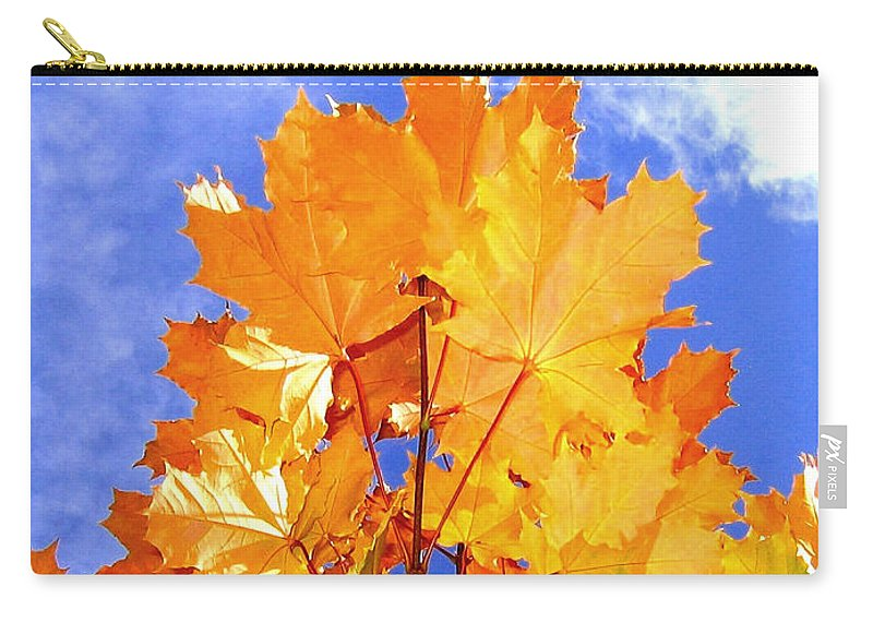 Maple Leaves Carry-all Pouch featuring the photograph Crown Of Gold by Will Borden