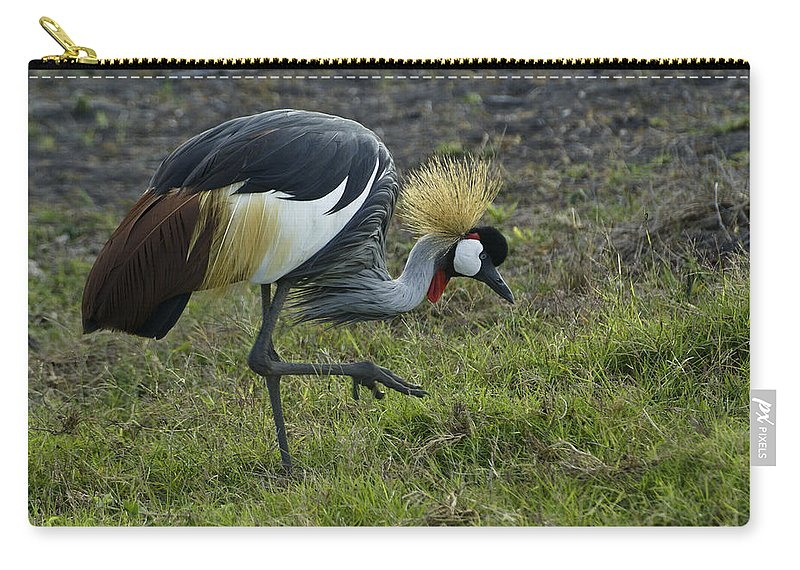 Africa Carry-all Pouch featuring the photograph Crowned Crane by Michele Burgess