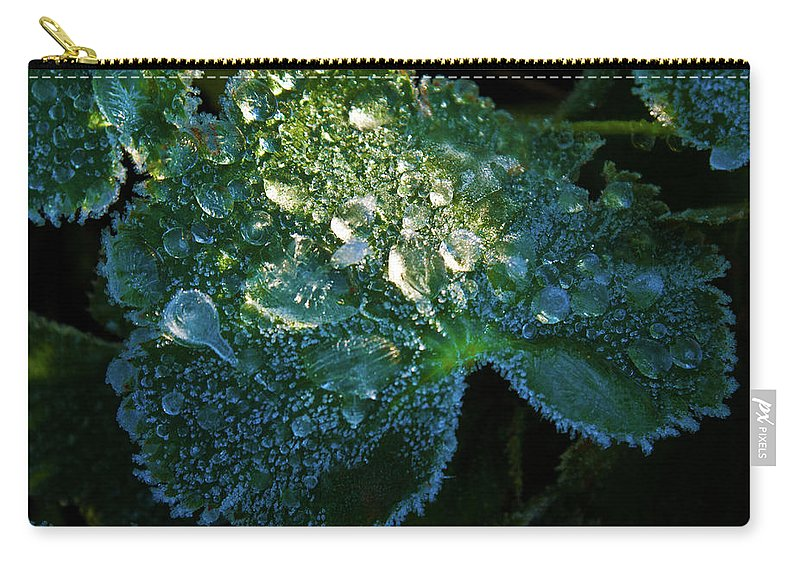 Crystal Carry-all Pouch featuring the photograph Crystal Lady's Mantle by Douglas Barnett