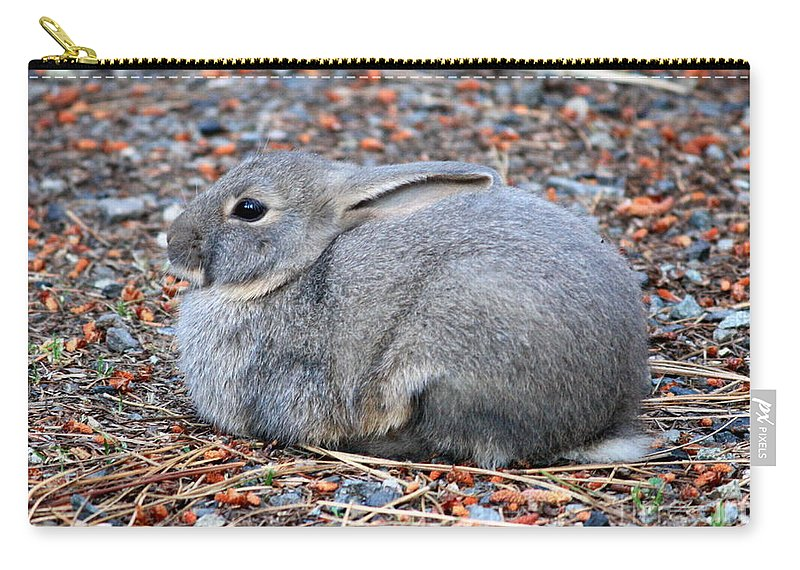 Rabbit Carry-all Pouch featuring the photograph Cuddly Campground Bunny by Carol Groenen