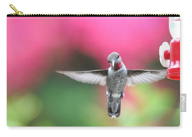 Curious Carry-all Pouch featuring the photograph Curiosity by Lynn Bauer