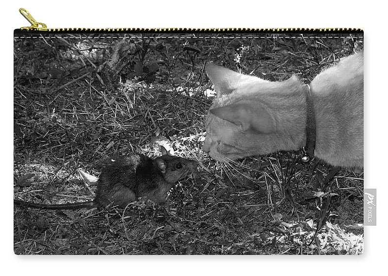 T Carry-all Pouch featuring the photograph Curious by David Lee Thompson