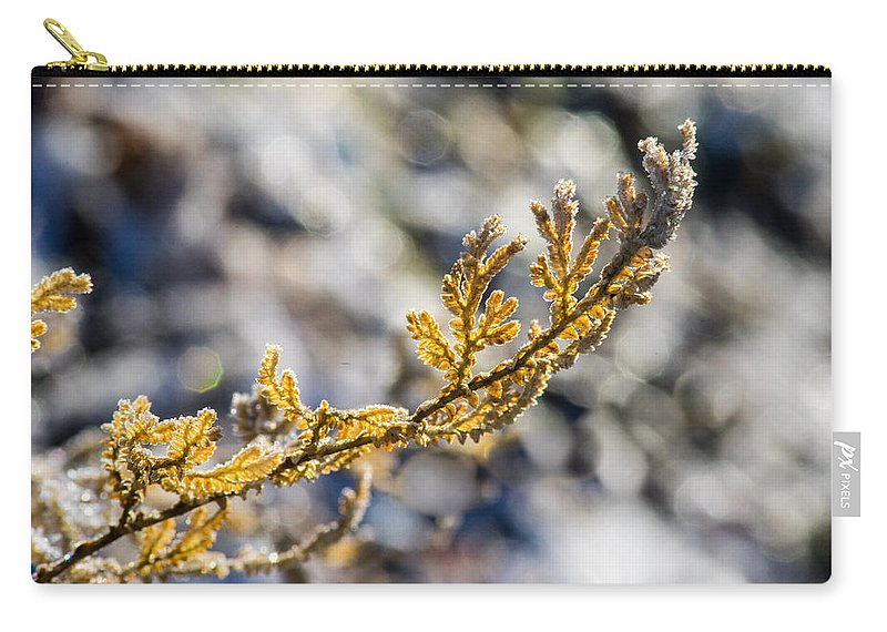 Curled Carry-all Pouch featuring the photograph Curled Fern Frond Tip by Douglas Barnett